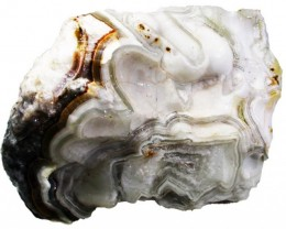 709.5 CTS LAGUNA LACE AGATE ROUGH -HAND PICKED [FLA93]
