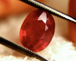 2.78 Carat Fiery Cherry Ruby - Gorgeous