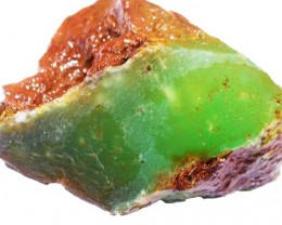 155.6 CTS CHRYSOPRASE ROUGH WEST AUSTRALIA[FLA320 ]