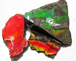 83.82 CTS AMMOLITE  ROUGH PARCEL SPECIMEN FROM CANADA  F5164