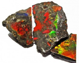 77.91 CTS AMMOLITE  ROUGH PARCEL SPECIMEN FROM CANADA  F5165
