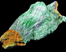 32.1 CTS MALACHITE SPECIMENS -ZAIRE [MGW4262]