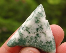 9.80g TUMBLE POLISHED TREE AGATE ROUGH FROM BRAZIL (49.00ct)