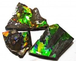 42.08 CTS AMMOLITE  ROUGH PARCEL SPECIMEN FROM CANADA  F5188