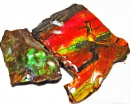 27.28 CTS AMMOLITE  ROUGH PARCEL SPECIMEN FROM CANADA  F5192
