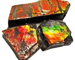 52.19 CTS AMMOLITE  ROUGH PARCEL SPECIMEN FROM CANADA  F5203