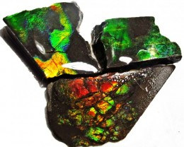 31.68 CTS AMMOLITE  ROUGH PARCEL SPECIMEN FROM CANADA  F5205