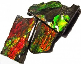 38.54 CTS AMMOLITE  ROUGH PARCEL SPECIMEN FROM CANADA  F5215