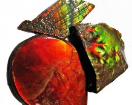 54.19 CTS AMMOLITE  ROUGH PARCEL SPECIMEN FROM CANADA  F5220