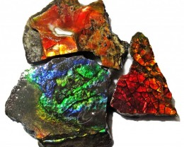 37.81 CTS AMMOLITE  ROUGH PARCEL SPECIMEN FROM CANADA  F5221