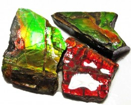 22.63 CTS AMMOLITE  ROUGH PARCEL SPECIMEN FROM CANADA  F5230