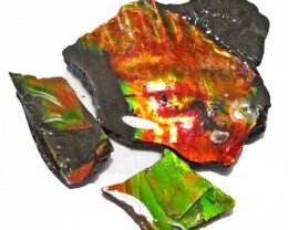 47.20 CTS AMMOLITE  ROUGH PARCEL SPECIMEN FROM CANADA  F5235