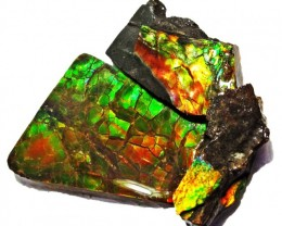 18.78 CTS AMMOLITE  ROUGH PARCEL SPECIMEN FROM CANADA  F5237
