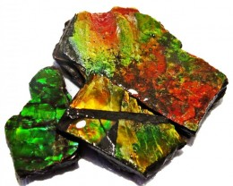 31.85 CTS AMMOLITE  ROUGH PARCEL SPECIMEN FROM CANADA  F5240