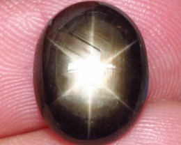 6.92 Carat Thailand Black Star Sapphire - Beautiful Gem