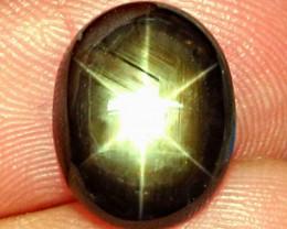 6.92 Carat Thailand Black Star Sapphire - Beautiful Gem
