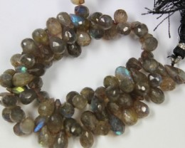 158 CTS - 1 STRAND LABRADORITE 8 X 5 MM - 10 INCHES