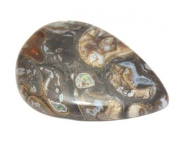 42mm AAA Colus Fossil agate cabochon - chalcedony, pyrite & quartz