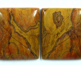 24.6 CTS JASPER PAIR POLISHED STONE GREAT RANGE IN STORE