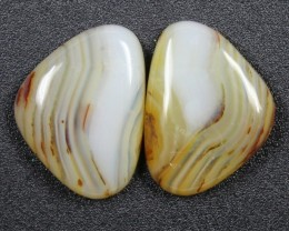 13.7 CTS WYOMING AGATE PAIR PERFECT FOR EARRINGS