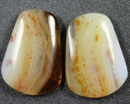 16.9 CTS WYOMING AGATE PAIR PERFECT FOR EARRINGS