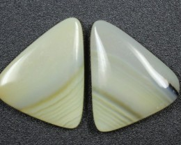 15.5 CTS WYOMING AGATE PAIR PERFECT FOR EARRINGS