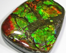 9.8 CTS NEON BRIGHT AMMOLITE DOUBLET [MGW4431]
