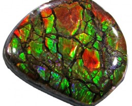 18.5 CTS NEON BRIGHT AMMOLITE DOUBLET [MGW4435]