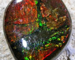 11.9 CTS NEON BRIGHT AMMOLITE DOUBLET [MGW4441]