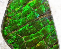 12.7 CTS NEON BRIGHT AMMOLITE DOUBLET [MGW4450]