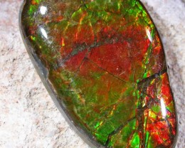 16.4 CTS NEON BRIGHT AMMOLITE DOUBLET [MGW4452]