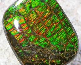 9.5 CTS NEON BRIGHT AMMOLITE DOUBLET [MGW4454]