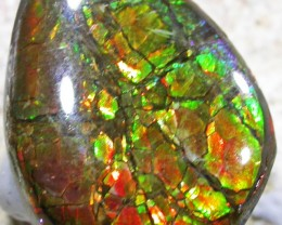 6.3 CTS NEON BRIGHT AMMOLITE DOUBLET [MGW4464]