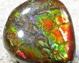 8.2 CTS NEON BRIGHT AMMOLITE DOUBLET [MGW4467]