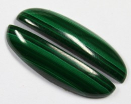 24.80 CTS CABOCHON HIGH DOME MALACHITE PAIRS