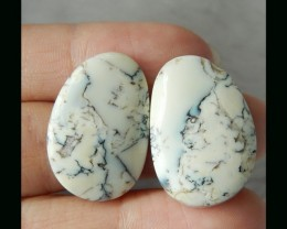 Natural Dendritic Agate Cabochon Pair   -  25x16x5 MM