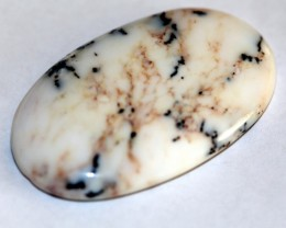 Natural Dendrite Cabochon Pear D-38