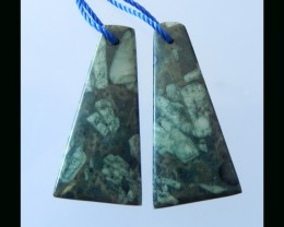 Natural Plant Fossil Earring Beads -  32x15x5 MM