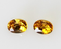 0.55cts  Matching Oval Pair Natural Golden Sapphires 2pcs Beautiful Accent