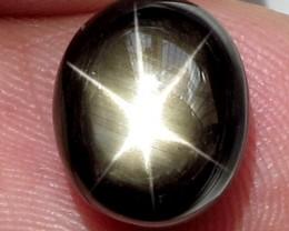 7.95 Carat Thailand Black Star Sapphire - Cool Stone