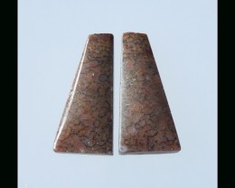Natural Dinosaur Bone Cabochon Pair - 25x12x4 MM