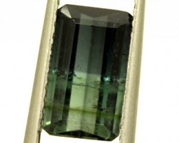 BI- COLOUR TOURMALINE 3.50 CTS PG-1564