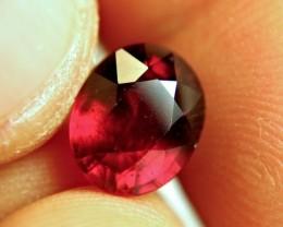 3.69 Carat Fiery Pigeon Blood Ruby - Gorgeous