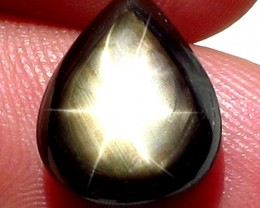 10.75  Carat Thailand Star Sapphire - Gorgeous