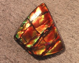'From my Personal Collection' BIG & SO UNIQUE Natural Ammolite Gem