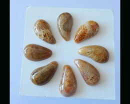 8 pcs Indonesian Coral Fossil Cabochon Set -  12x7 MM,17.75 Cts
