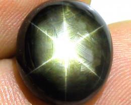9.43 Carat Thailand Black Star Sapphire - Superb