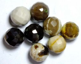PETRIFIED WOOD BEADS, (8PC) 62.15CTS NP-1019