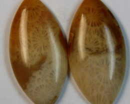18.60 CTS  PAIR OF POLISHED CORAL NATURAL STONES