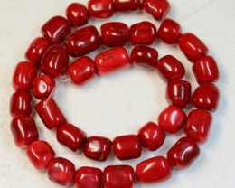 566 CTS RED CORAL STRAND OF BEADS